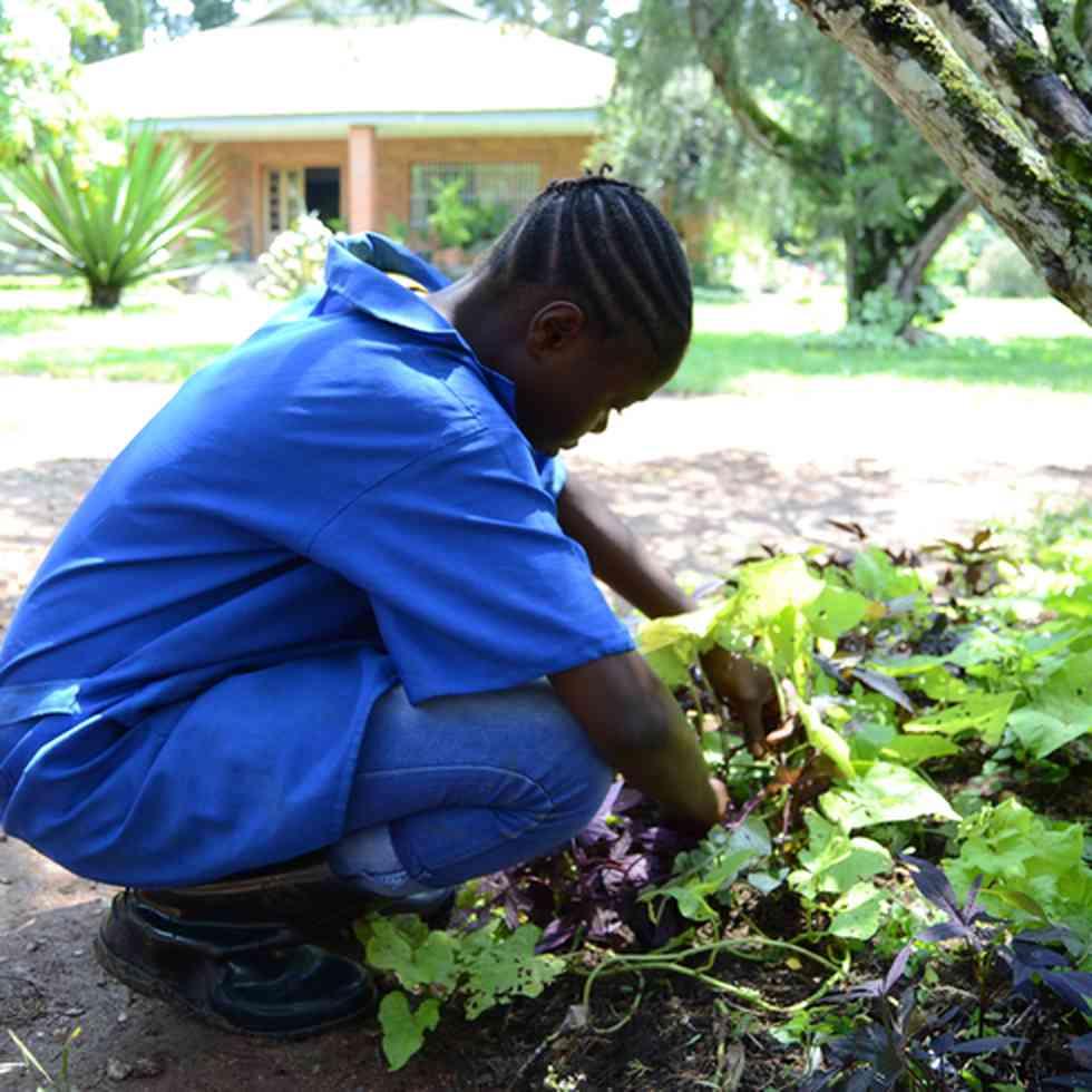 Landbouwonderwijs voor meisjes promoten in Congo